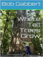 Where Tall Trees Grow