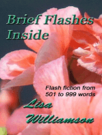 Brief Flashes Inside