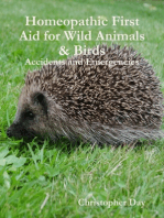 Homeopathic First Aid for Wild Animals & Birds
