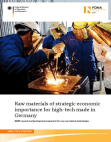 Research Study on Raw Materials of Strategic Economic Importance for High-tech
