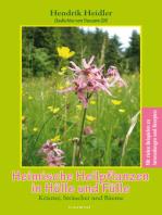 Heimische Heilpflanzen in Hülle und Fülle