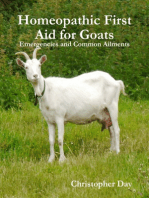 Homeopathic First Aid for Goats
