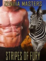 Stripes Of Fury