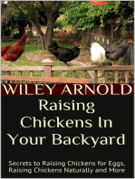 Raising Chickens In Your Backyard: Secrets to Raising Chickens for Eggs, Raising Chickens Naturally and More