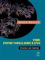 The Immunoglobulins