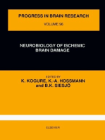 Neurobiology of Ischemic Brain Damage