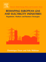 Reshaping European Gas and Electricity Industries