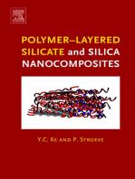 Polymer-Layered Silicate and Silica Nanocomposites