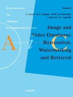 Image and Video Databases