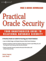 Practical Oracle Security