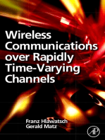 Wireless Communications Over Rapidly Time-Varying Channels