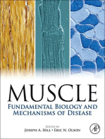 Muscle 2-Volume Set: Fundamental Biology and Mechanisms of Disease