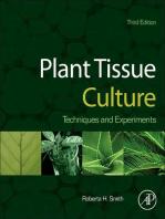 Plant Tissue Culture: Techniques and Experiments