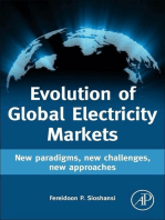 Evolution of Global Electricity Markets