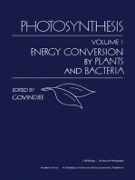 Photosynthesis V1