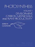 Photosynthesis V2