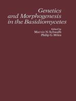 Genetics and Morphogenesis in the Basidiomycetes