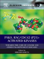 PAKs, RAC/CDC42 (p21)-activated Kinases