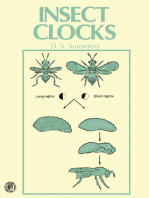 Insect Clocks