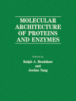 Molecular Architecture of Proteins and Enzymes