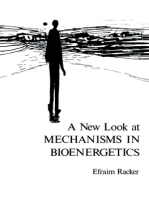 A New Look at Mechanisms in Bioenergetics