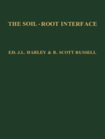 The Soil-Root Interface