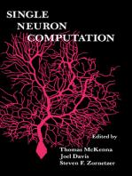 Single Neuron Computation
