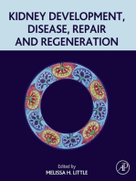 Kidney Development, Disease, Repair and Regeneration