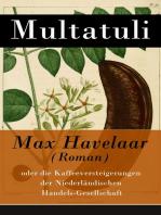 Max Havelaar (Roman)