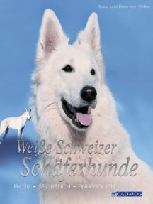 Weiße Schweizer Schäferhunde: Aktiv, sportlich, anhänglich