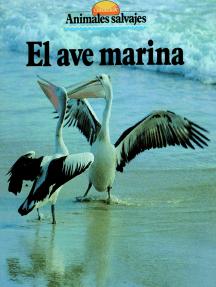 El ave marina