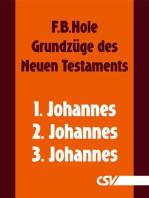 Grundzüge des Neuen Testaments - 1., 2. & 3. Johannes