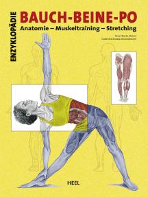Enzyklopädie Bauch - Beine - Po: Anatomie - Muskeltraining - Stretching
