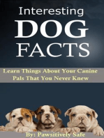 Interesting Dog Facts