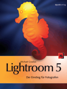 Lightroom 5: Der Einstieg für Fotografen