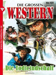 Die großen Western 101: Die Todfeindschaft