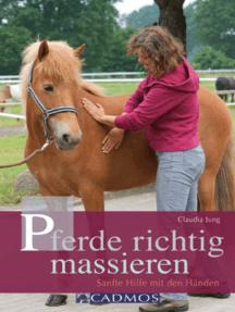 Pferde richtig massieren: Sanfte Hilfe mit den Händen