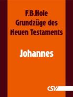 Grundzüge des Neuen Testaments - Johannes