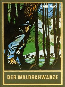 Der Waldschwarze: und andere Erzählungen, Band 44 der Gesammelten Werke