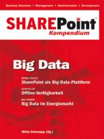 SharePoint Kompendium - Bd.4