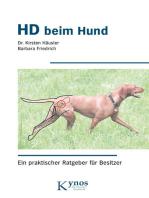 HD beim Hund