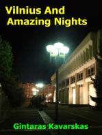 Vilnius And Amazing Nights