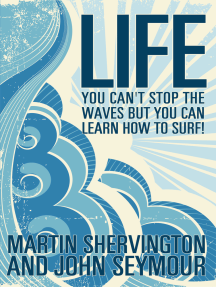 LIFE: you can't stop the waves but you can learn how to surf!