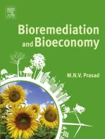 Bioremediation and Bioeconomy