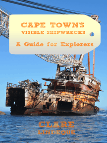 Cape Town's Visible Shipwrecks: A Guide for Explorers