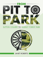 'From Pit to Park'