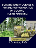 Somatic Embryogenesis for Micropropagation of Coconut (Cocos nucifera L.)