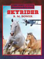 Skyrider (Illustrated Edition)