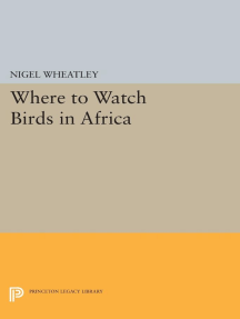 Where to Watch Birds in Africa