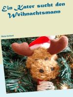 ein Kater sucht den Weihnachtsmann